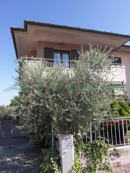 Casa a schiera Fano Carrara